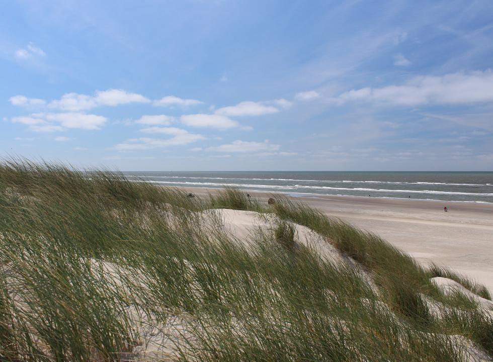 View of the lovely sandy beach from the high dunes behind the beach of Vejers