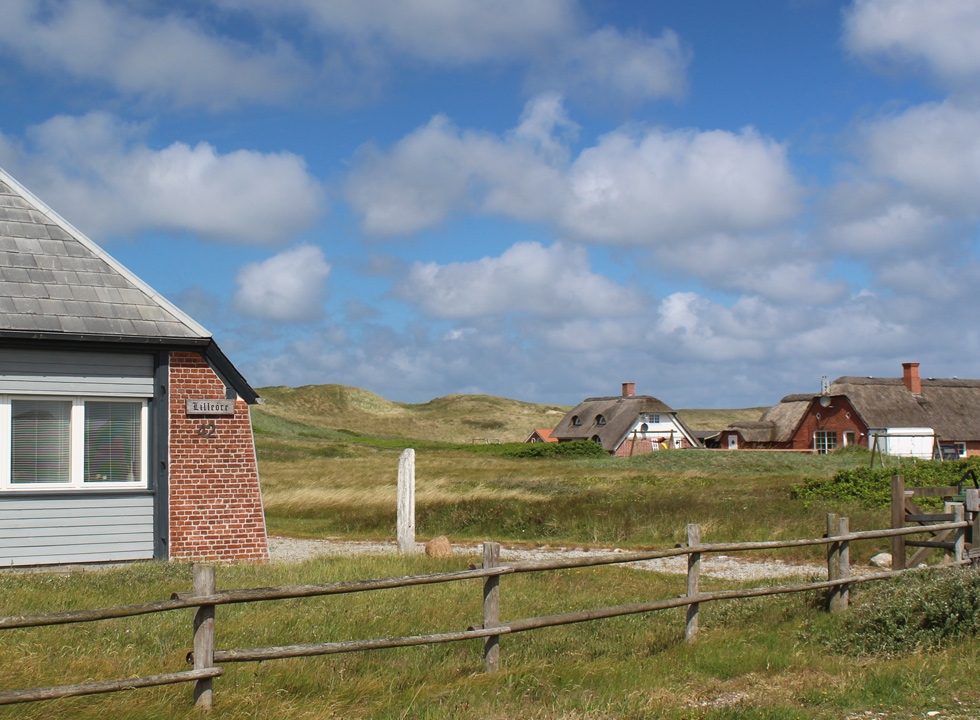 Well-situated holiday homes behind the high dunes in Vejlby Klit