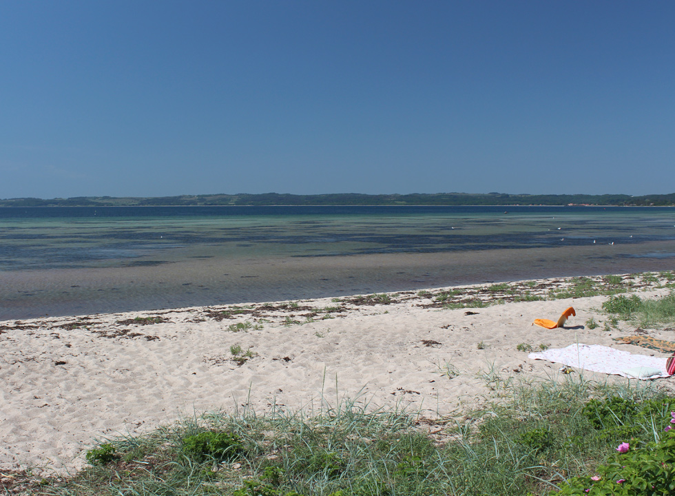 Lovely sandy beach with shallow and clear bathing water in Vibæk Strand