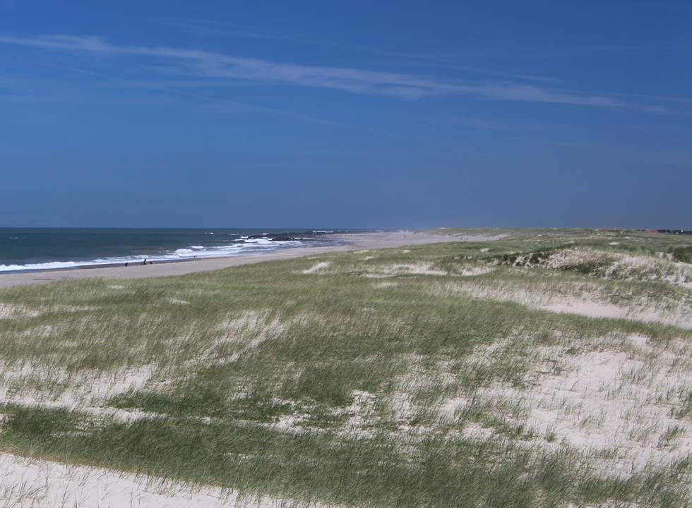 The wide sandy beach with dunes and dune landscape with holiday homes in Vrist