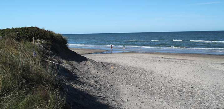 A view of the dunes, the beach and the sea