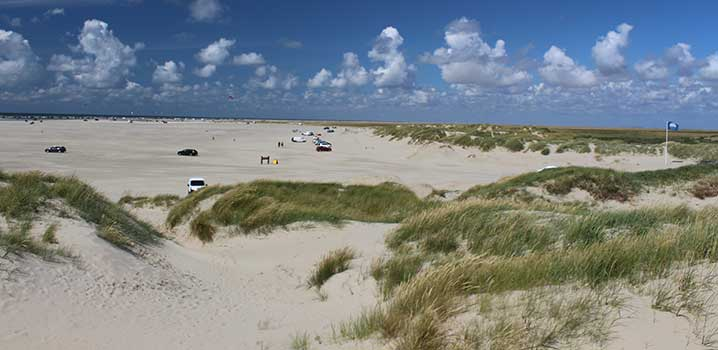 Rent a holiday home and enjoy your holiday in the wonderful nature on Rømø